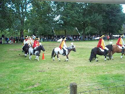 367_Dag-van-het-paard4