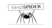 MadSpider Online Marketing